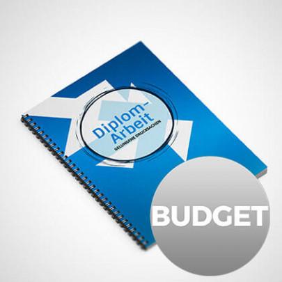 Diplomarbeit budget